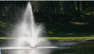 fountain_foundation