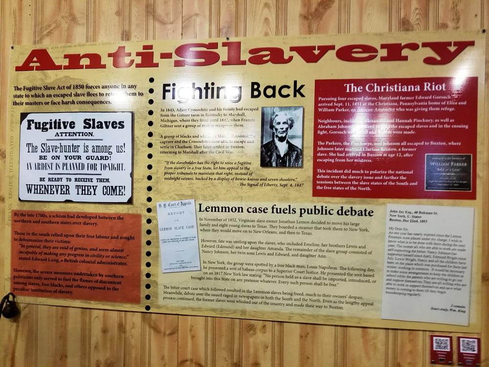 Buxton Museum display